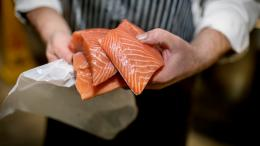 Fish monger's hands holding fresh salmon fillets